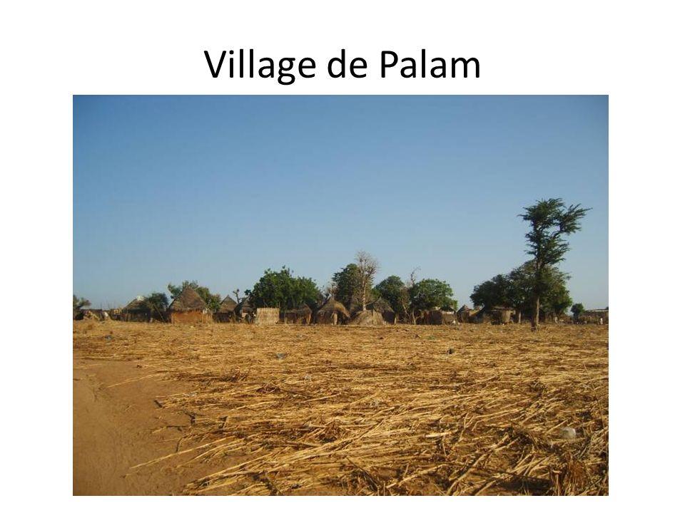 Village de Palam