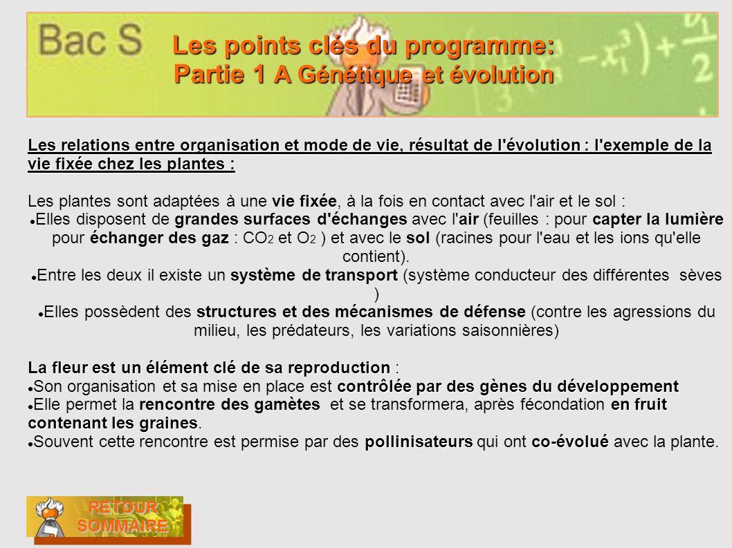 Les points clés du programme: Partie 1 A Génétique et évolution Les points clés du programme: Partie 1 A Génétique et évolution RETOUR SOMMAIRE RETOUR