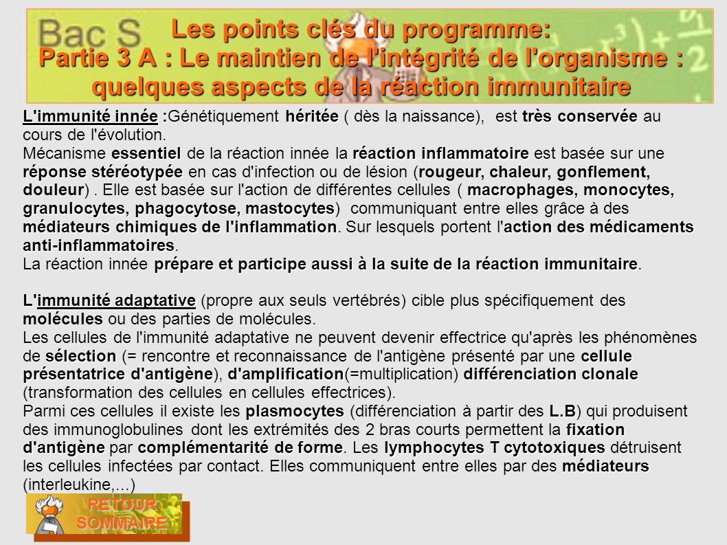 Les points clés du programme: Partie 3 A : Le maintien de l'intégrité de l'organisme : quelques aspects de la réaction immunitaire RETOUR SOMMAIRE RET