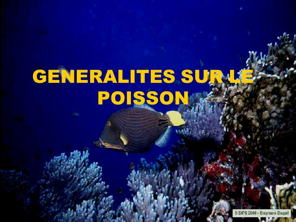 GENERALITES SUR LE POISSON