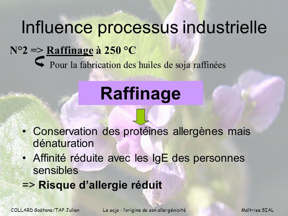 COLLARD Gaëtane/TAP Julien10 COLLARD Gaëtane/TAP Julien Le soja : lorigine de son allergénicitéMaîtrise SIAL Influence processus industrielle Conserva