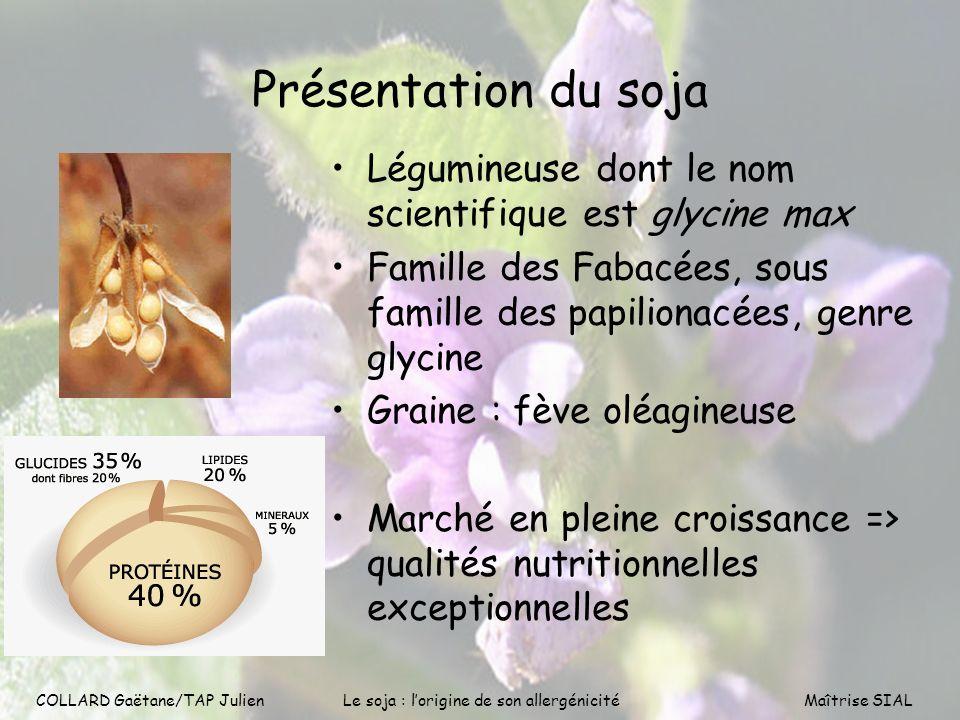 COLLARD Gaëtane/TAP Julien3 Présentation du soja Légumineuse dont le nom scientifique est glycine max Famille des Fabacées, sous famille des papiliona