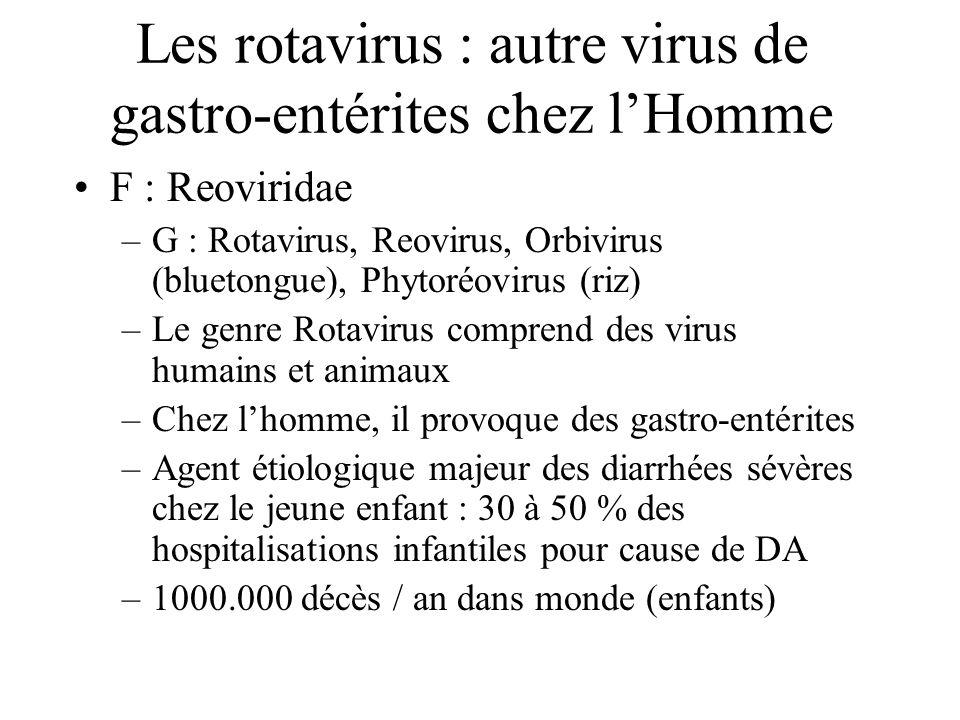Les rotavirus : autre virus de gastro-entérites chez lHomme F : Reoviridae –G : Rotavirus, Reovirus, Orbivirus (bluetongue), Phytoréovirus (riz) –Le g