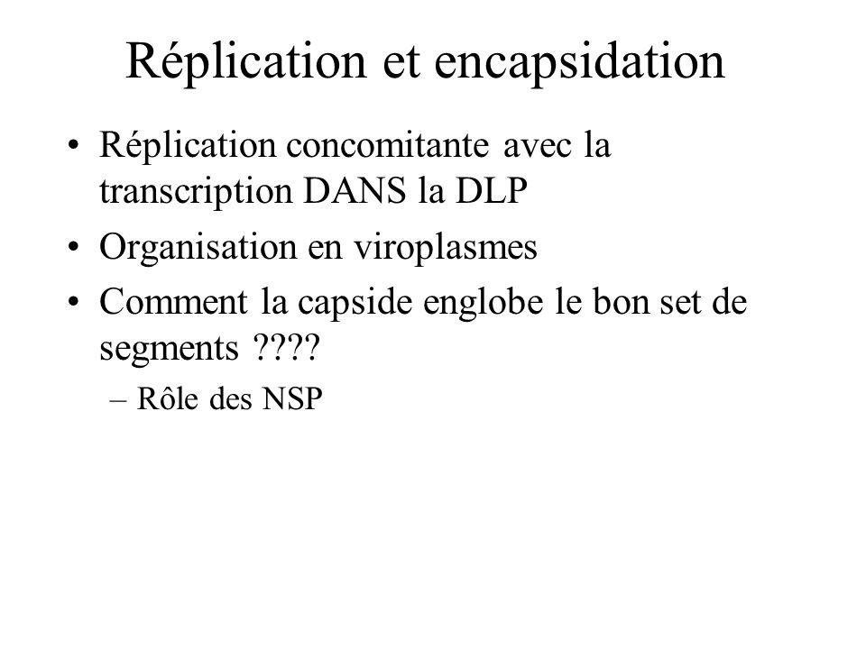 Réplication et encapsidation Réplication concomitante avec la transcription DANS la DLP Organisation en viroplasmes Comment la capside englobe le bon