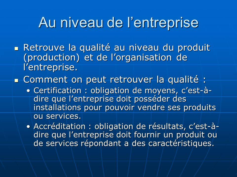 Au niveau de lentreprise Retrouve la qualité au niveau du produit (production) et de lorganisation de lentreprise. Retrouve la qualité au niveau du pr