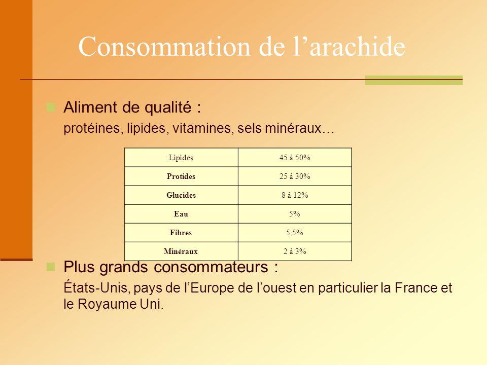 Consommation de larachide Aliment de qualité : protéines, lipides, vitamines, sels minéraux… Plus grands consommateurs : États-Unis, pays de lEurope d