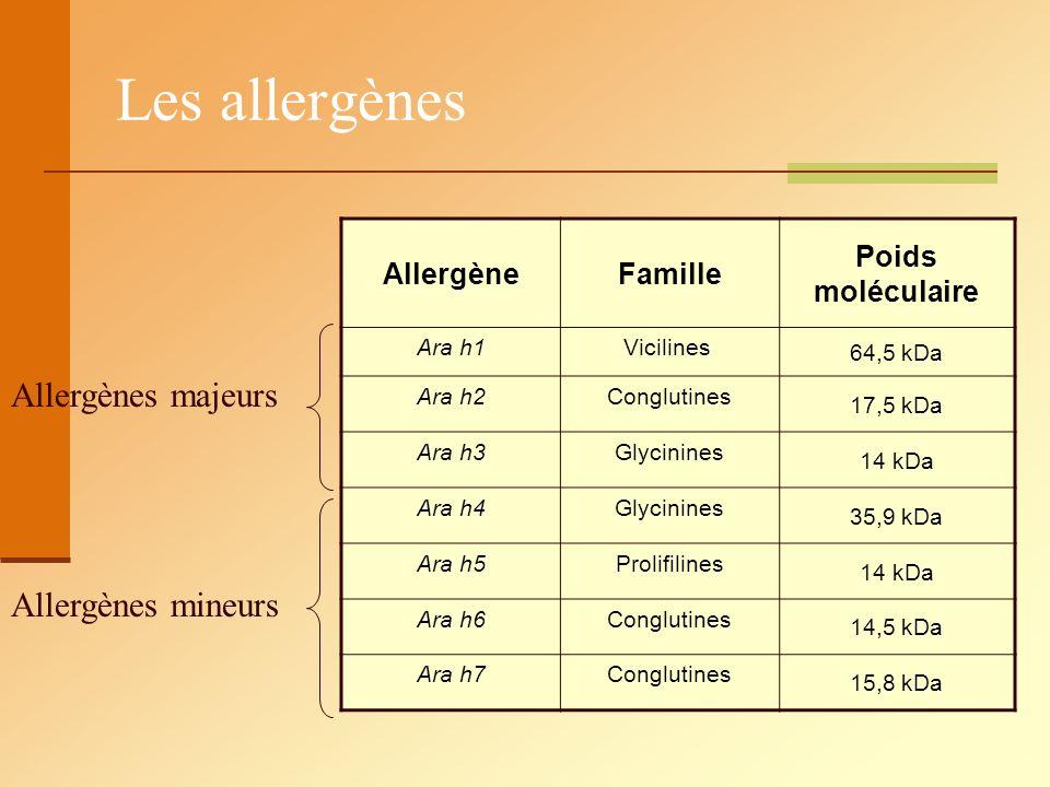 Les allergènes AllergèneFamille Poids moléculaire Ara h1 Vicilines 64,5 kDa Ara h2Conglutines 17,5 kDa Ara h3Glycinines 14 kDa Ara h4Glycinines 35,9 k