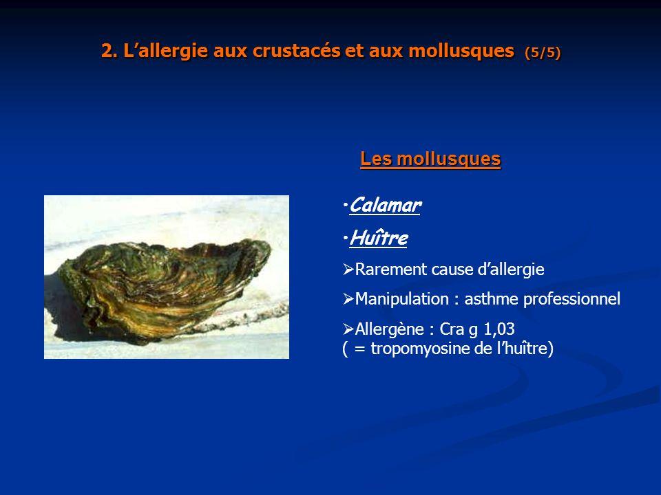 Les mollusques Calamar Huître Rarement cause dallergie Manipulation : asthme professionnel Allergène : Cra g 1,03 ( = tropomyosine de lhuître) 2. Lall
