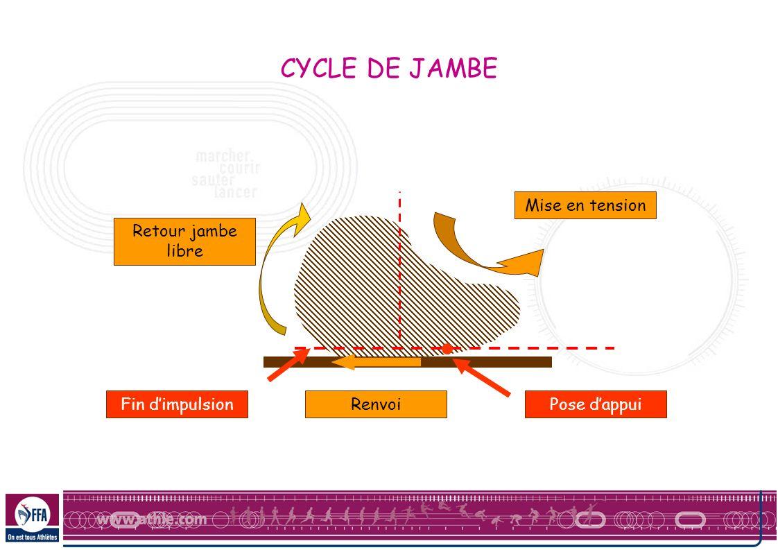 Mise en tension Pose dappuiRenvoiFin dimpulsion Retour jambe libre CYCLE DE JAMBE