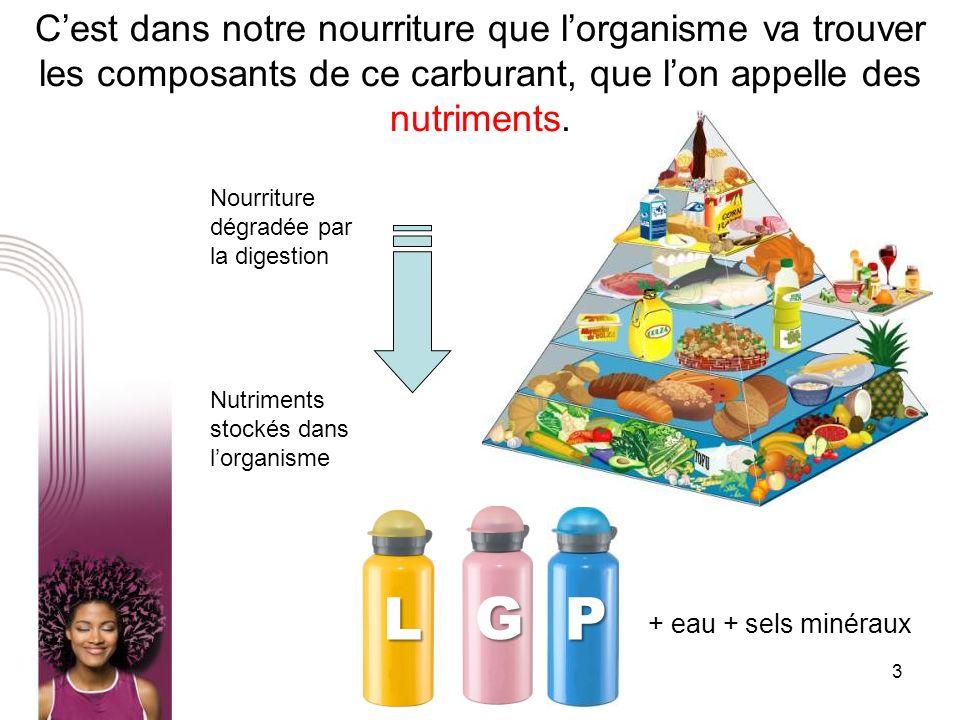 3 Cest dans notre nourriture que lorganisme va trouver les composants de ce carburant, que lon appelle des nutriments. Nourriture dégradée par la dige
