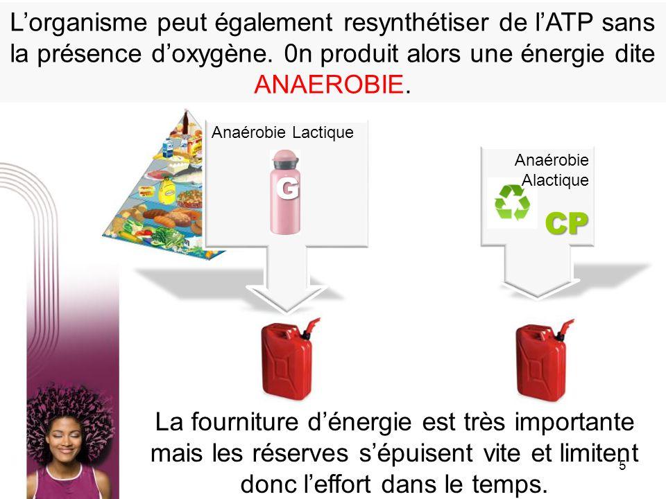 5 Lorganisme peut également resynthétiser de lATP sans la présence doxygène. 0n produit alors une énergie dite ANAEROBIE. La fourniture dénergie est t