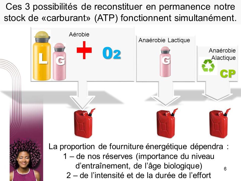 6 Ces 3 possibilités de reconstituer en permanence notre stock de «carburant» (ATP) fonctionnent simultanément. Anaérobie Lactique G La proportion de
