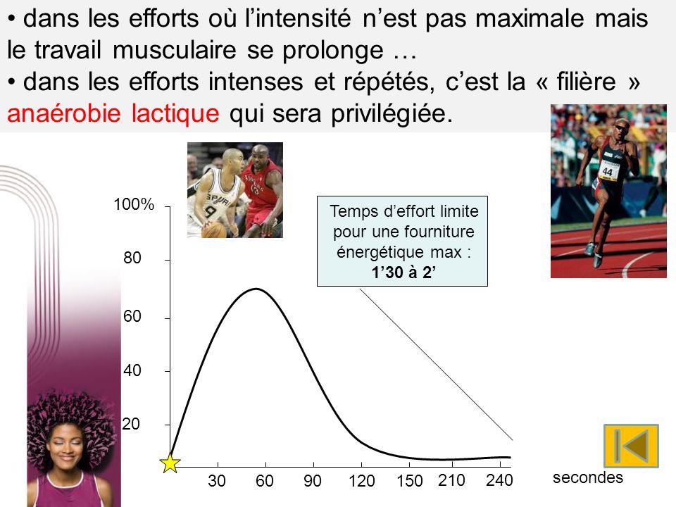 dans les efforts où lintensité nest pas maximale mais le travail musculaire se prolonge … dans les efforts intenses et répétés, cest la « filière » an