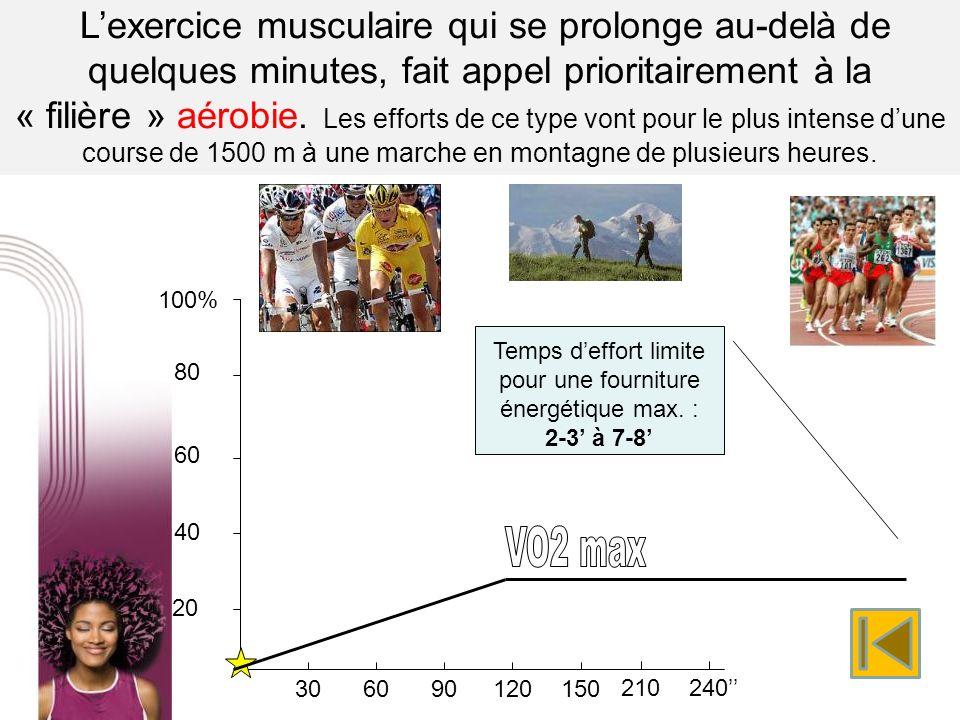Lexercice musculaire qui se prolonge au-delà de quelques minutes, fait appel prioritairement à la « filière » aérobie. Les efforts de ce type vont pou