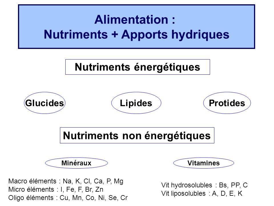 Alimentation : Nutriments + Apports hydriques Nutriments énergétiques GlucidesLipidesProtides MinérauxVitamines Macro éléments : Na, K, Cl, Ca, P, Mg