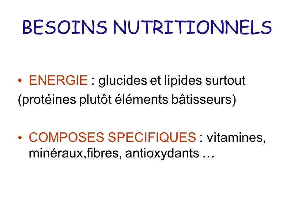 BESOINS NUTRITIONNELS ENERGIE : glucides et lipides surtout (protéines plutôt éléments bâtisseurs) COMPOSES SPECIFIQUES : vitamines, minéraux,fibres,