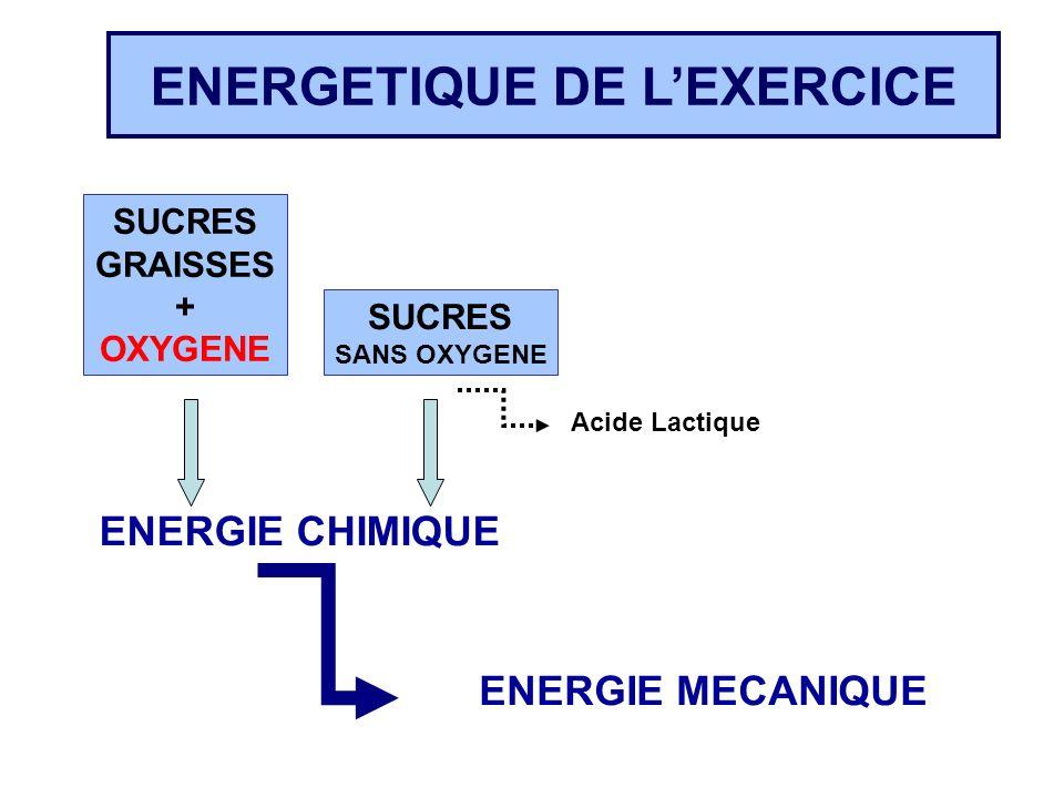 ENERGETIQUE DE LEXERCICE SUCRES GRAISSES + OXYGENE SUCRES SANS OXYGENE ENERGIE CHIMIQUE ENERGIE MECANIQUE Acide Lactique