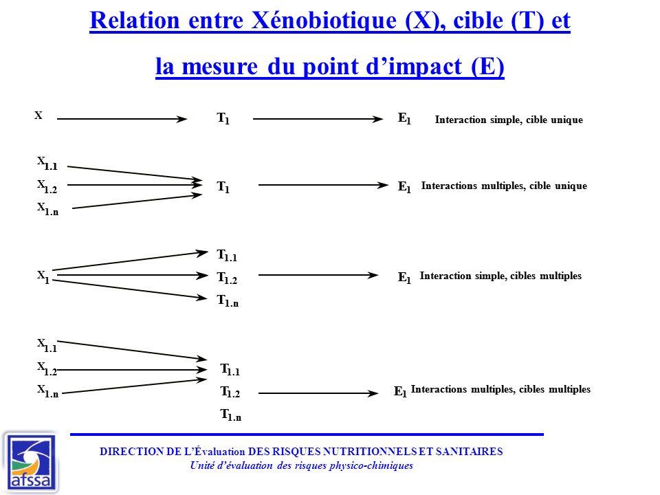 DIRECTION DE LÉvaluation DES RISQUES NUTRITIONNELS ET SANITAIRES Unité dévaluation des risques physico-chimiques X T 1 E 1 X 1.1 X 1.2 T 1 E 1 X 1.n T 1.1 X 1 T 1.2 E 1 T 1.n X 1.1 X 1.2 T 1.1 X 1.n T 1.2 E 1 T 1.n Interaction simple,cibleunique Interactions multiples,cibleunique Interaction simple,ciblesmultiples Interactions multiples,ciblesmultiples T 1 E 1 1.1 1.2 T 1 E 1 1.n T 1.1 1 T 1.2 E 1 T 1.n 1.1 1.2 T 1.1 1.n T 1.2 E 1 T 1.n Interaction simple,cibleunique Interactions multiples,cibleunique Interaction simple,ciblesmultiples Interactions multiples,ciblesmultiples Relation entre Xénobiotique (X), cible (T) et la mesure du point dimpact (E)
