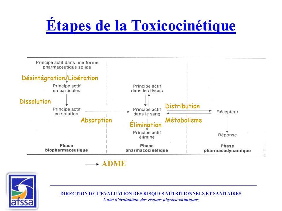 Étapes de la Toxicocinétique Désintégration/Libération Dissolution Absorption Distribution Élimination Métabolisme ADME DIRECTION DE LEVALUATION DES R