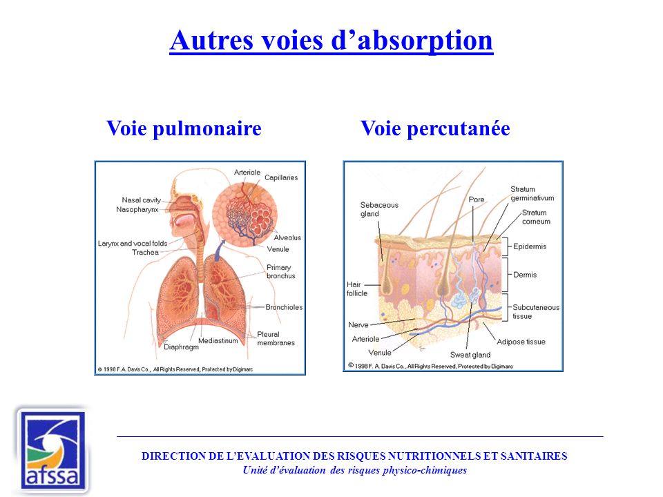 Autres voies dabsorption Voie pulmonaireVoie percutanée DIRECTION DE LEVALUATION DES RISQUES NUTRITIONNELS ET SANITAIRES Unité dévaluation des risques