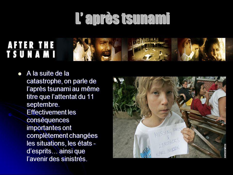 L après tsunami L après tsunami A la suite de la catastrophe, on parle de laprès tsunami au même titre que lattentat du 11 septembre. Effectivement le