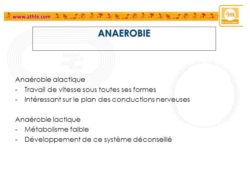 ANAEROBIE Anaérobie alactique -Travail de vitesse sous toutes ses formes -Intéressant sur le plan des conductions nerveuses Anaérobie lactique -Métabo