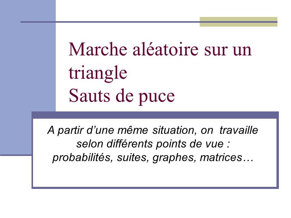Marche aléatoire sur un triangle Sauts de puce A partir dune même situation, on travaille selon différents points de vue : probabilités, suites, graphes, matrices…