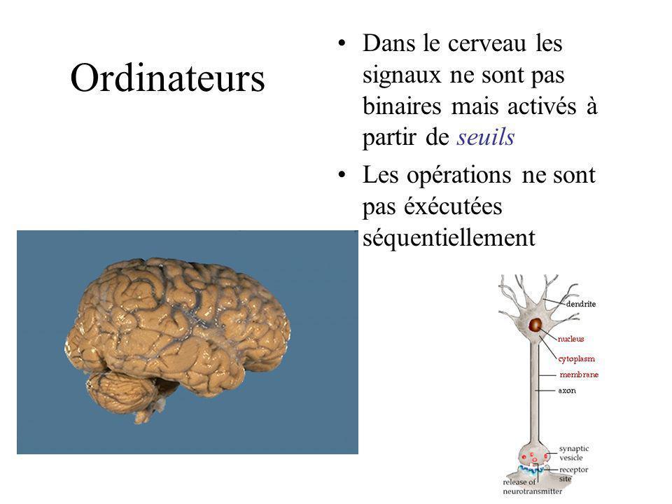 Ordinateurs La nature a aussi produit les cerveaux Le cerveau ne semble pas suivre les procédures de von Neumann ou de Turing