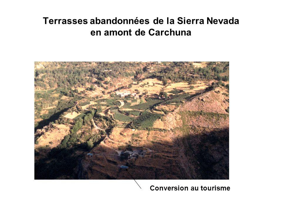 Terrasses abandonnées de la Sierra Nevada en amont de Carchuna Conversion au tourisme