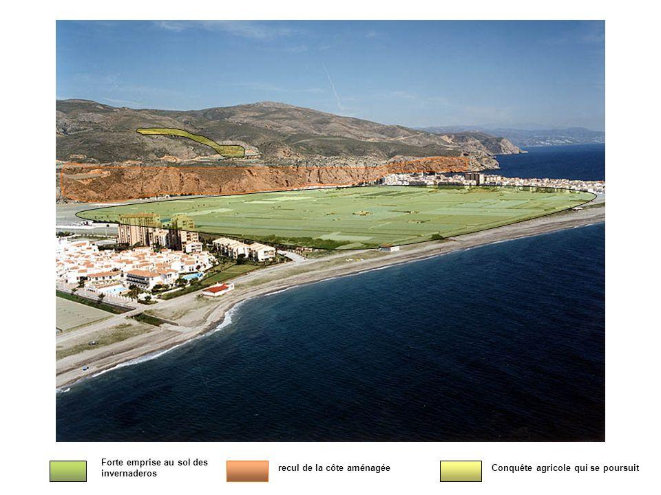 Forte emprise au sol des invernaderos recul de la côte aménagéeConquête agricole qui se poursuit
