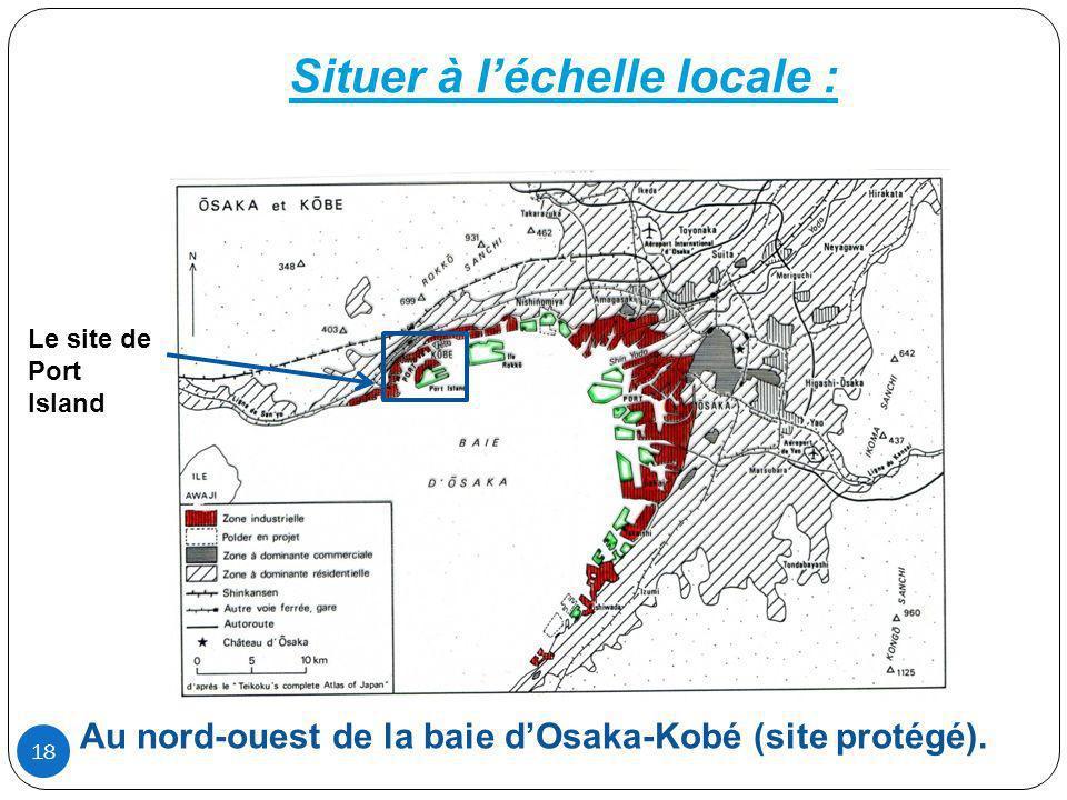 Situer à léchelle locale : Le site de Port Island Au nord-ouest de la baie dOsaka-Kobé (site protégé). 18