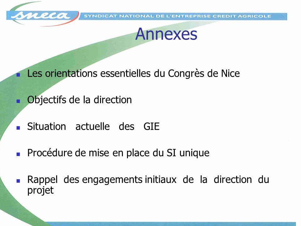 Annexes Les orientations essentielles du Congrès de Nice Objectifs de la direction Situation actuelle des GIE Procédure de mise en place du SI unique