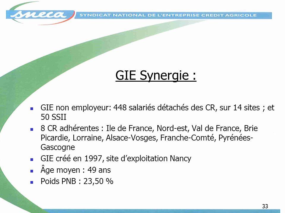 33 GIE Synergie : GIE non employeur: 448 salariés détachés des CR, sur 14 sites ; et 50 SSII 8 CR adhérentes : Ile de France, Nord-est, Val de France,