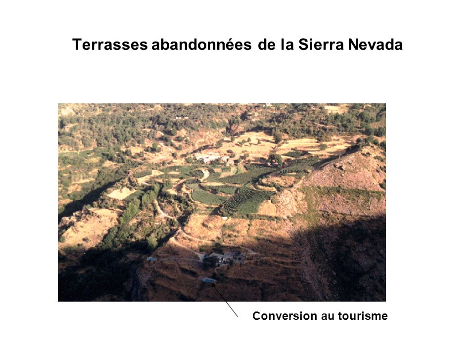 Terrasses abandonnées de la Sierra Nevada Conversion au tourisme