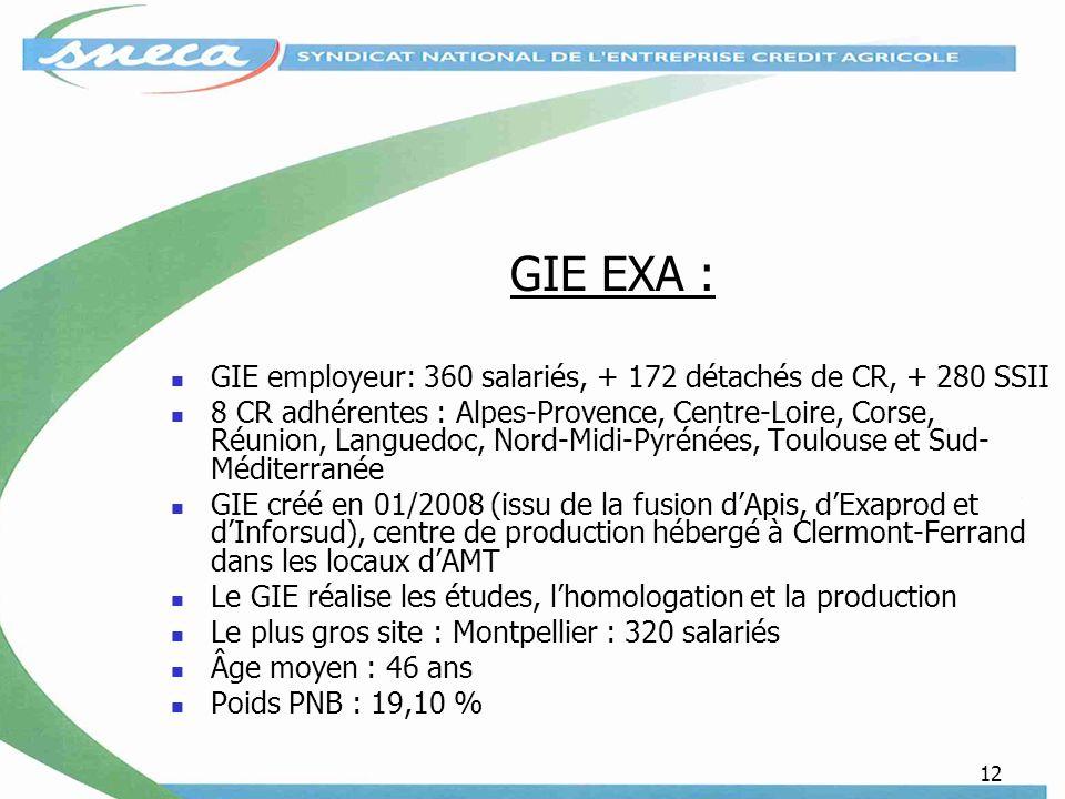 12 GIE EXA : GIE employeur: 360 salariés, + 172 détachés de CR, + 280 SSII 8 CR adhérentes : Alpes-Provence, Centre-Loire, Corse, Réunion, Languedoc, Nord-Midi-Pyrénées, Toulouse et Sud- Méditerranée GIE créé en 01/2008 (issu de la fusion dApis, dExaprod et dInforsud), centre de production hébergé à Clermont-Ferrand dans les locaux dAMT Le GIE réalise les études, lhomologation et la production Le plus gros site : Montpellier : 320 salariés Âge moyen : 46 ans Poids PNB : 19,10 %