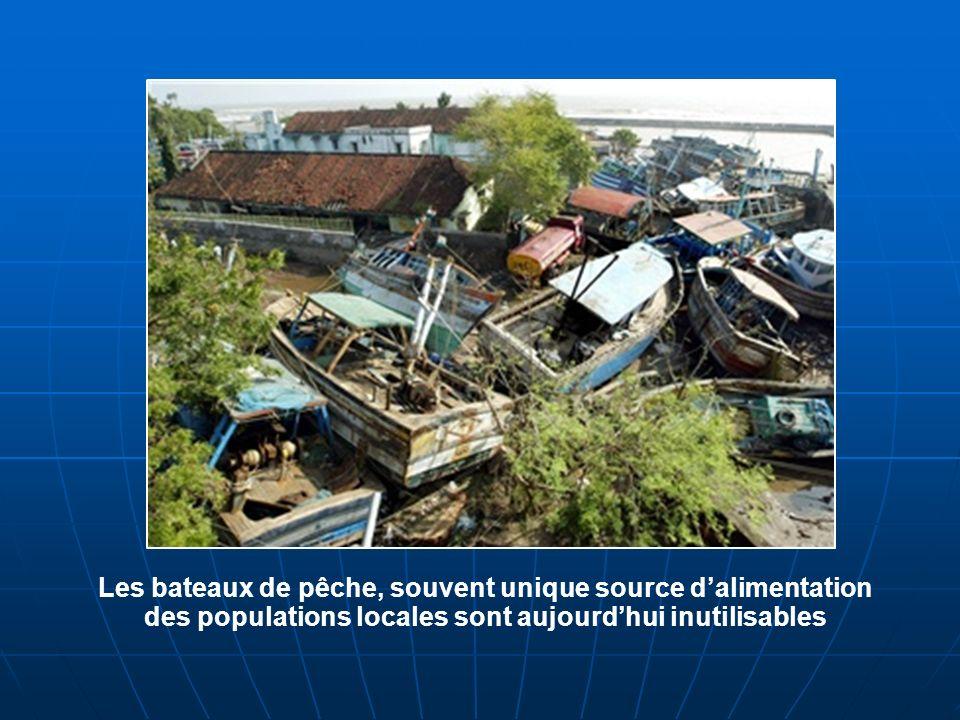 Les bateaux de pêche, souvent unique source dalimentation des populations locales sont aujourdhui inutilisables