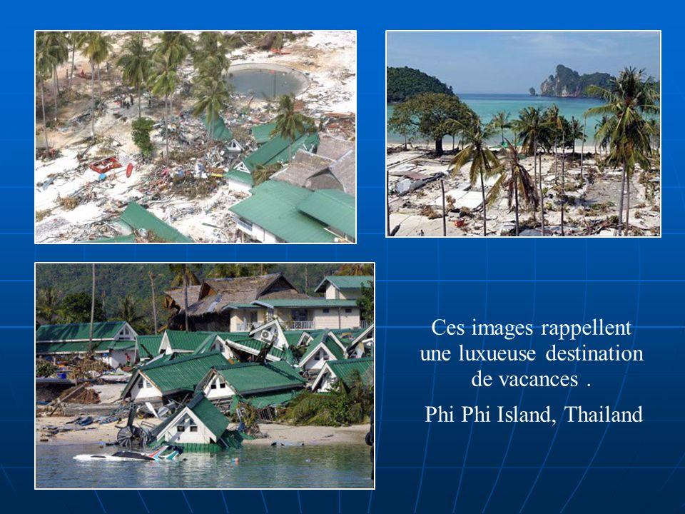 Ces images rappellent une luxueuse destination de vacances. Phi Phi Island, Thailand