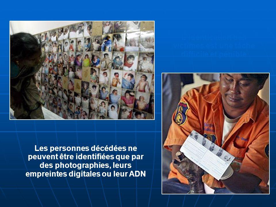 Lidentication des victimes est une tâche difficile et pénible Les personnes décédées ne peuvent être identifiées que par des photographies, leurs empreintes digitales ou leur ADN