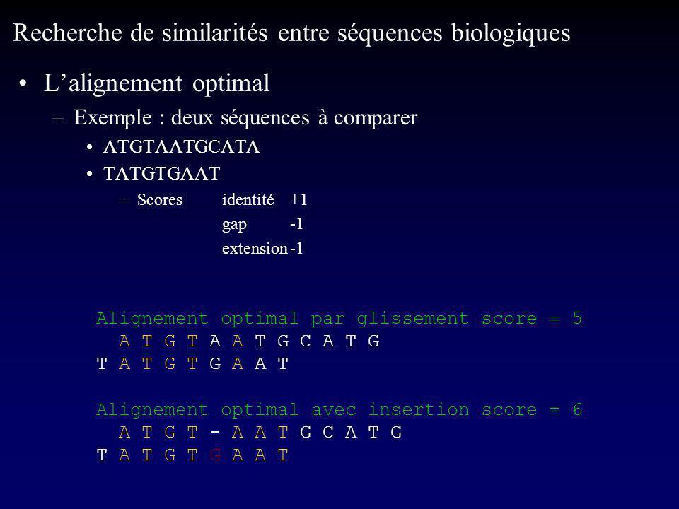 Lalignement optimal –Exemple : deux séquences à comparer ATGTAATGCATA TATGTGAAT –Scores identité+1 gap-1 extension-1 Recherche de similarités entre séquences biologiques Alignement optimal par glissement score = 5 A T G T A A T G C A T G T A T G T G A A T Alignement optimal avec insertion score = 6 A T G T - A A T G C A T G T A T G T G A A T