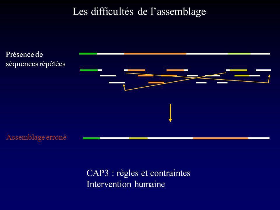 Les difficultés de lassemblage Présence de séquences répétées Assemblage erroné CAP3 : règles et contraintes Intervention humaine