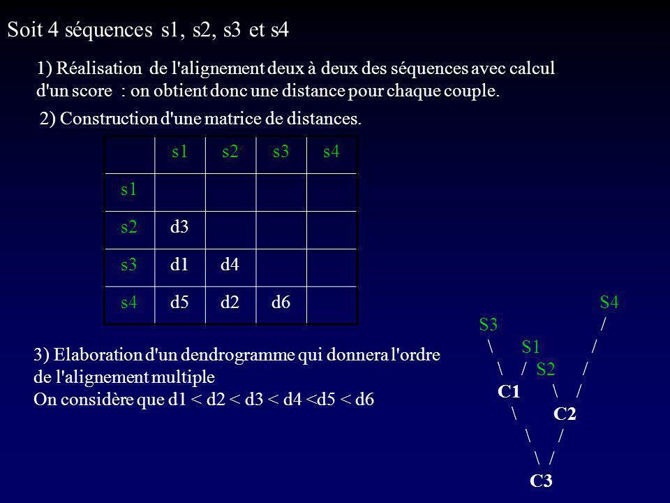 Soit 4 séquences s1, s2, s3 et s4 1) Réalisation de l alignement deux à deux des séquences avec calcul d un score : on obtient donc une distance pour chaque couple.
