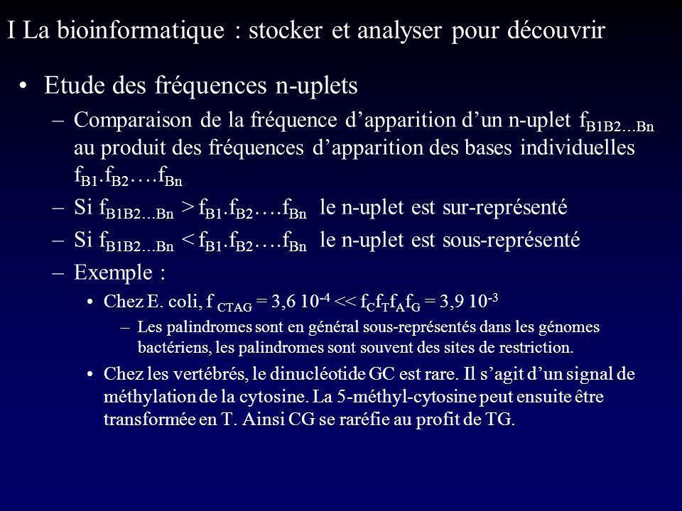 I La bioinformatique : stocker et analyser pour découvrir Etude des fréquences n-uplets –Comparaison de la fréquence dapparition dun n-uplet f B1B2…Bn au produit des fréquences dapparition des bases individuelles f B1.f B2 ….f Bn –Si f B1B2…Bn > f B1.f B2 ….f Bn le n-uplet est sur-représenté –Si f B1B2…Bn < f B1.f B2 ….f Bn le n-uplet est sous-représenté –Exemple : Chez E.