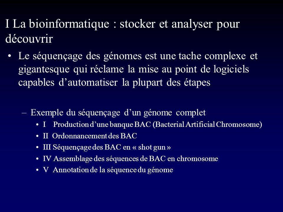 I La bioinformatique : stocker et analyser pour découvrir La composition des génomes –Le rapport (G+C)/(A+T) ou le pourcentage de GC Escherichia coli51 % Plasmodium falciparum18 % Thermus thermophilus68 % Vertébrés40-45% (et présence disochores) –Le pourcentage de GC varie entre 15 et 75 %.