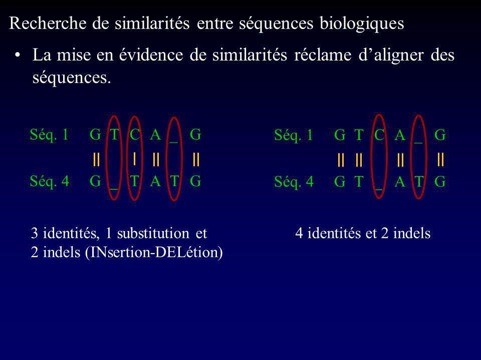 La mise en évidence de similarités réclame daligner des séquences.