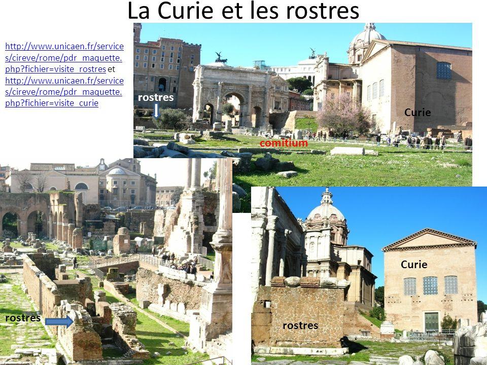 La Curie et les rostres http://www.unicaen.fr/service s/cireve/rome/pdr_maquette. php?fichier=visite_rostreshttp://www.unicaen.fr/service s/cireve/rom