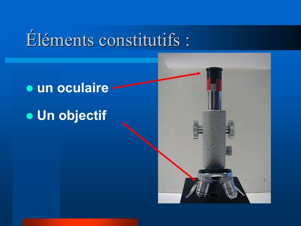 L objectif Cest une lentille convergente de courte distance focale (quelques mm) Un objet placé à proximité de son foyer donne une image intermédiaire agrandie et renversée Le grandissement de l objectif est noté 1 Un dispositif de rotation permet de changer lobjectif.