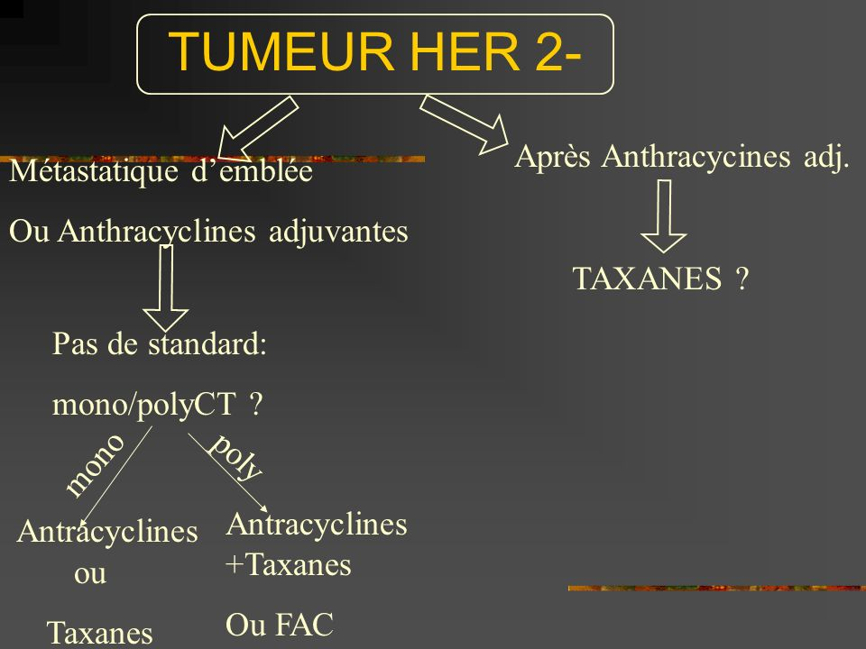 TUMEUR HER 2- Métastatique demblée Ou Anthracyclines adjuvantes Après Anthracycines adj. Pas de standard: mono/polyCT ? mono poly Antracyclines ou Tax
