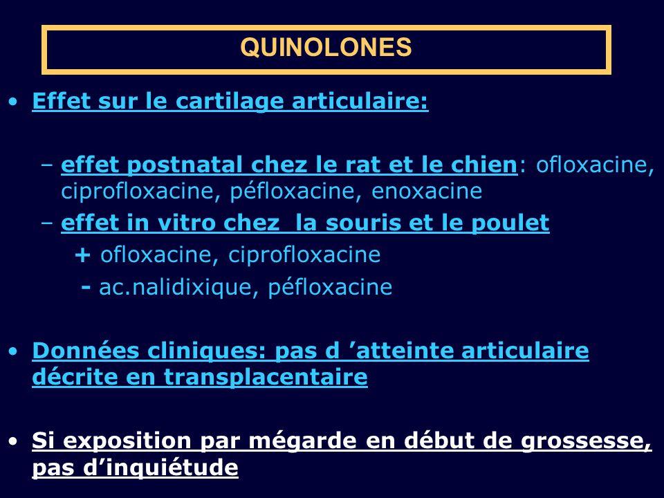 QUINOLONES Effet sur le cartilage articulaire: –effet postnatal chez le rat et le chien: ofloxacine, ciprofloxacine, péfloxacine, enoxacine –effet in