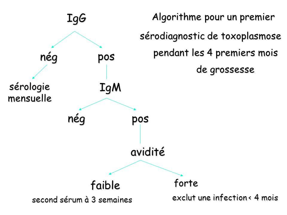 IgG IgM avidité pos nég posnég sérodiagnostic de toxoplasmose Algorithme pour un premier pendant les 4 premiers mois de grossesse forte exclut une inf