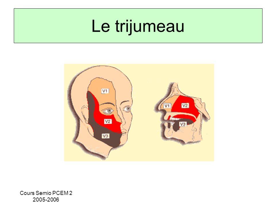 Cours Semio PCEM 2 2005-2006 Le trijumeau